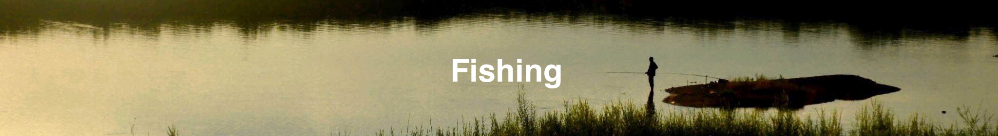 Fishing/Fry&Lure